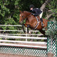 How to qualify for British Show Jumping championships