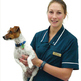 Equestrian careers: Veterinary nurse