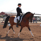 A day in the life of an Olympian - training for dressage