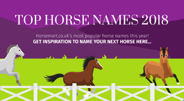 Popular Horse Names 2018 By Horsemart
