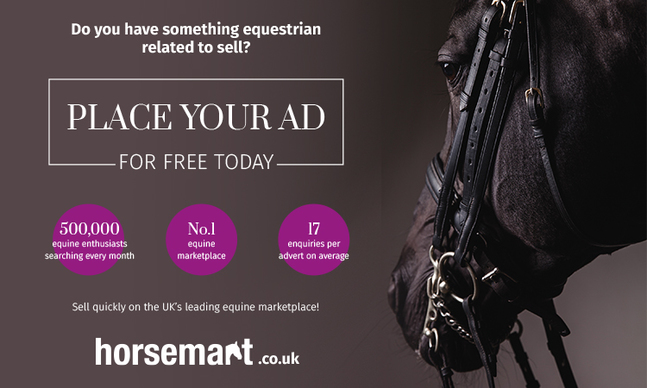 ***FACEBOOK BANS THE SALE OF HORSES*** - Place your ad with Horsemart for FREE
