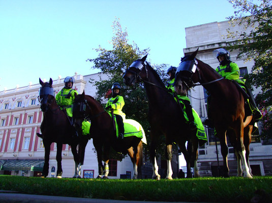 Police Horses And Dogs Are Now Protected By Law
