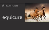 Equicure - Health Feature