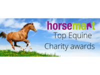 The UK's Top Equine Rescue Stories
