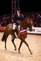 SEIB  Racehorse to Riding Horse Show Championships final qualifier moved to prime slot