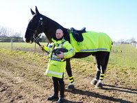 New horse joins Essex Police Mounted Unit