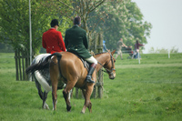 Badminton Horse Trials 2012: Many new challenges for star-studded entries