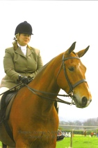 Plus size horse riding clothes evolve