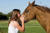 British Horse Association urges people to celebrate with care