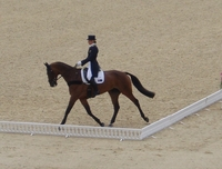 Forget Bryony Gordon – here's what REALLY happened at the Olympic eventing dressage!