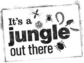 Watch out – It's a Jungle Out There!