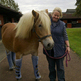The Horse Trust Rehomes Rescue Pony