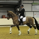 New support from Sue Carson Saddles helps Roland Tong at winter regionals
