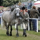 Tim Gredley set to make his comeback at Royal Windsor Horse Show 2012