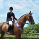 Valentine Jak Qualifies for HOYS