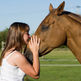New horse care checklist released at the National Equine Forum