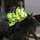 Football fan who punched horse is