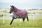 Turnout Rugs From Just £35.99 + FREE Delivery